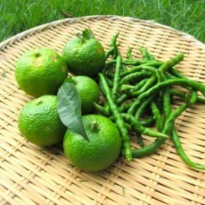 青柚子胡椒と酵素ジュースが学べる・材料の購入もこちら